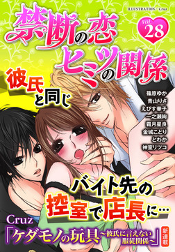 禁断の恋 ヒミツの関係 vol.28-電子書籍