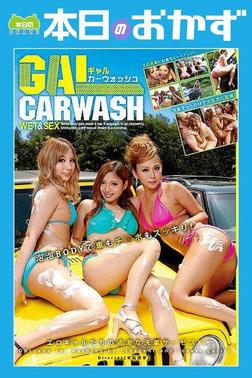 GAL CARWASH WET&SEX ギャルカーウオッシュ 本日のおかず-電子書籍