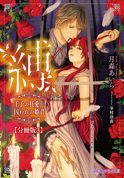 縛 王子の狂愛、囚われの姫君【分冊版3】【イラスト入り】-電子書籍