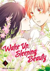 Wake Up, Sleeping Beauty Volume 3