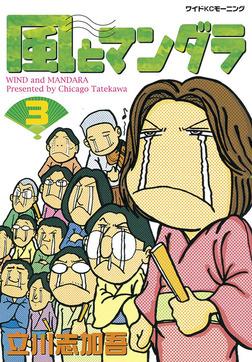 風とマンダラ(3)-電子書籍