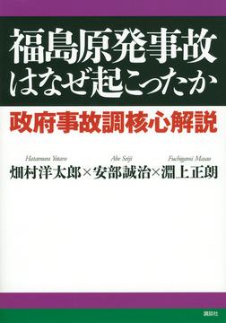 福島原発事故はなぜ起こったか 政府事故調核心解説-電子書籍