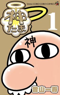 神たま(1)-電子書籍