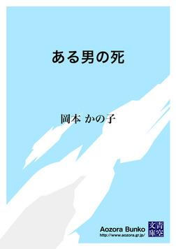 ある男の死-電子書籍