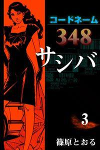 コードネーム348 サシバ (3)