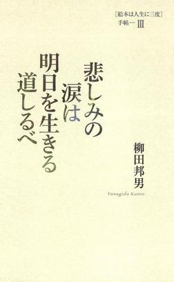悲しみの涙は明日を生きる道しるべ [絵本は人生に三度]手帖III-電子書籍