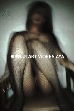 加納典明 ART WORKS AYA-電子書籍
