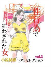 性行為で狂わされた女-「小説秘戯」ベストセレクションvol.3