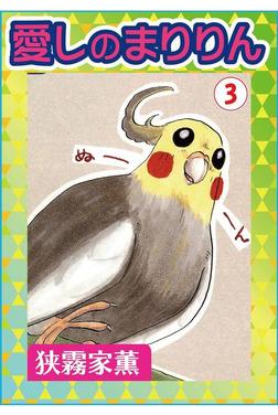 愛しのまりりん3-電子書籍