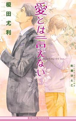 愛とは言えない3【イラスト入り】-電子書籍