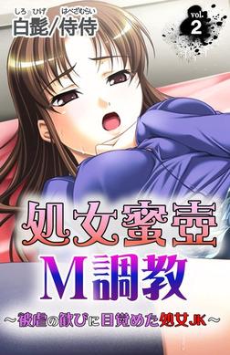 処女蜜壷M調教~被虐の歓びに目覚めた処女JK~ 第2巻-電子書籍