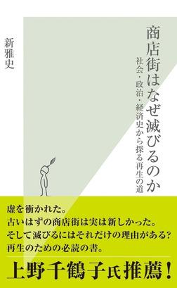 商店街はなぜ滅びるのか~社会・政治・経済史から探る再生の道~-電子書籍
