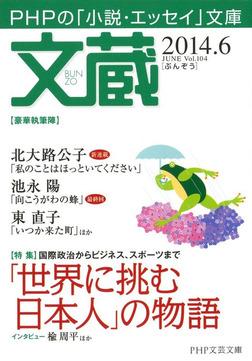 文蔵 2014.6-電子書籍