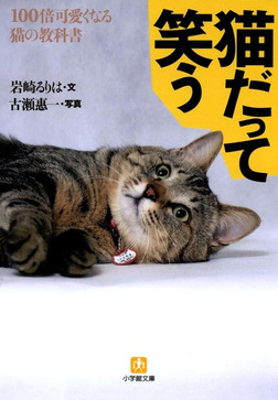 猫だって笑う100倍可愛くなる猫の教科書(小学館文庫)-電子書籍