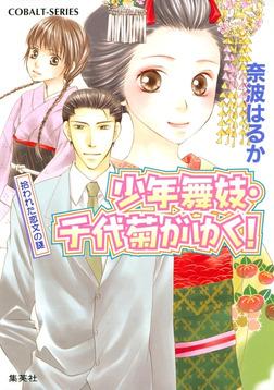 少年舞妓・千代菊がゆく!19 拾われた恋文の謎-電子書籍