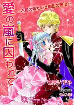 愛の嵐に囚われて-水晶の処女姫と褐色の騎士-【書下ろし・イラスト入り】-電子書籍