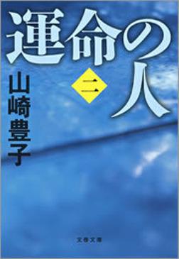 運命の人(二)-電子書籍