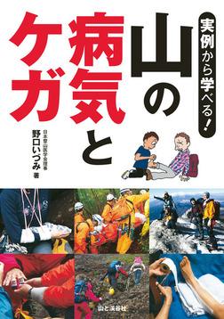 実例から学べる! 山の病気とケガ-電子書籍