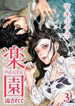 楽園~流されて~ 3巻-電子書籍