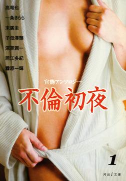 再生の悦楽 不倫初夜1-電子書籍
