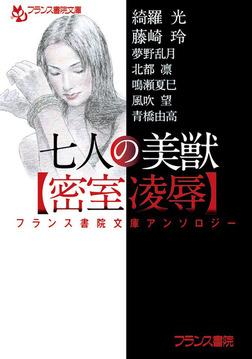 フランス書院文庫アンソロジー 七人の美獣【密室凌辱】-電子書籍