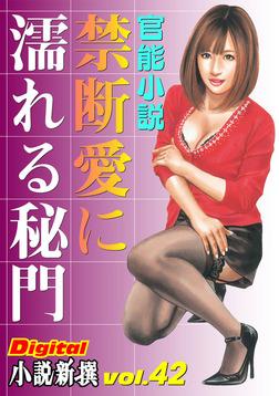【官能小説】禁断愛に濡れる秘門 ~Digital小説新撰 vol.42~-電子書籍