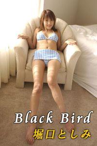 堀口としみ 「Black Bird」