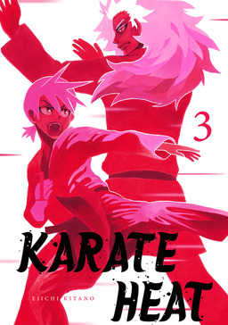Karate Heat Volume 3