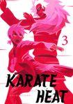 Karate Heat Volume 3