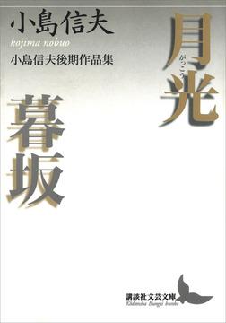月光・暮坂 小島信夫後期作品集-電子書籍