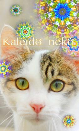 Kaleido neko-電子書籍