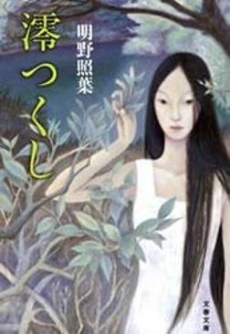 澪(みお)つくし-電子書籍