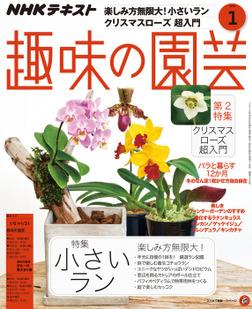 NHK 趣味の園芸 2019年1月号-電子書籍