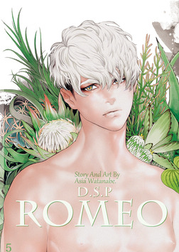 DragoStarPlayer ROMEO5-電子書籍