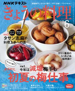 NHK きょうの料理 2021年6月号-電子書籍