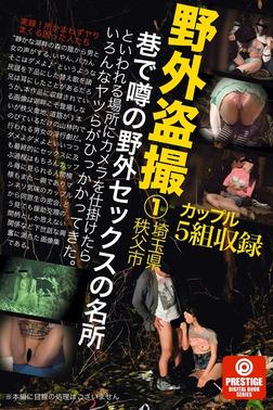 野外盗撮 埼玉県秩父市 巷で噂の野外セックスの名所といわれる場所にカメラを仕掛けたらいろんなヤツらがひっかかってきた。-電子書籍
