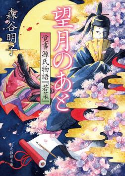 望月のあと 覚書源氏物語『若菜』-電子書籍