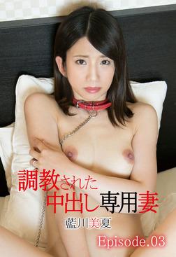 調教された中出し専用妻 藍川美夏 Episode.03-電子書籍