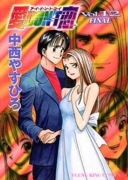 愛DON'T恋 / 12-電子書籍