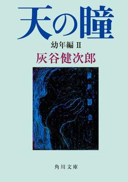 天の瞳 幼年編II-電子書籍