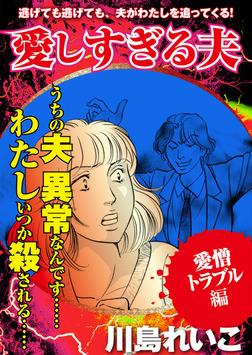 【愛憎トラブル編】愛しすぎる夫-電子書籍