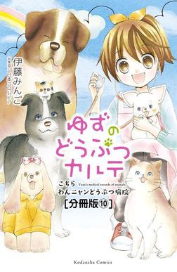 ゆずのどうぶつカルテ~こちら わんニャンどうぶつ病院~ 分冊版(10) かくれんぼ好き猫・ムギ-電子書籍