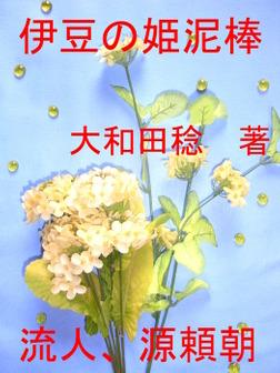 伊豆の姫泥棒-電子書籍