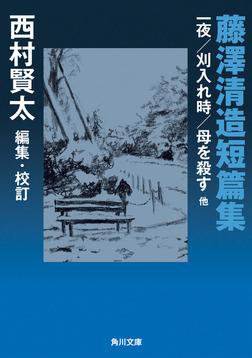 藤澤清造短篇集 一夜/刈入れ時/母を殺す 他-電子書籍