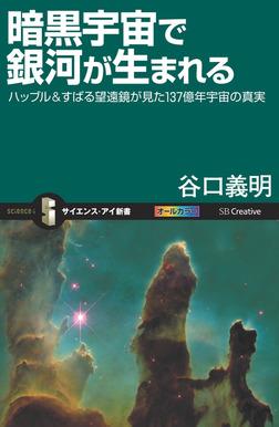 暗黒宇宙で銀河が生まれる ハッブル&すばる望遠鏡が見た137億年宇宙の真実-電子書籍