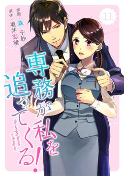 comic Berry's専務が私を追ってくる!11巻-電子書籍