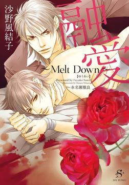 融愛 ~Melt Down~ 【イラスト付】-電子書籍