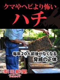 クマやヘビより怖いハチ 毎年20人前後がなくなる脅威の正体