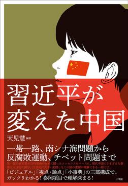 習近平が変えた中国-電子書籍