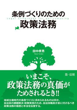 条例づくりのための政策法務-電子書籍